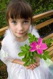 Little girl holding rose flower. Little girl in white dress holding rose flower, face up Stock Image