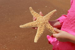 Little girl holding star fish Royalty Free Stock Photos