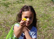 Young girl holding out yellow flower Royalty Free Stock Image