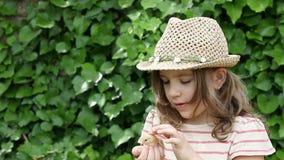 Little girl holding yellow chicken stock video