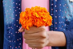 Little girl holding yellow marigold flower bouquet stock image