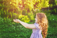 Little girl holding young green plant in sunlight. Royalty Free Stock Image