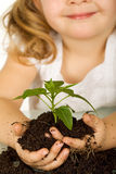 Little girl holding a young plant in soil Stock Photo