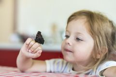 Little girl holds on the hand the Aglais io butterfly and watches for him royalty free stock photos