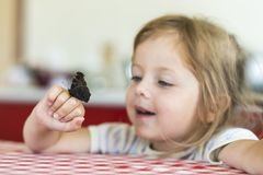 Little girl holds on the hand the Aglais io butterfly and watches for him, observation, emotions royalty free stock photo