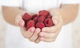 Little girl holds handful of raspberries. Little girl holds handful of juicy, ripe fresh raspberries Stock Image