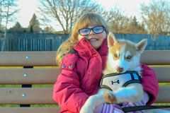 Little girl aged 3 to 5 holds a puppy on her arms, siberian husky royalty free stock photos