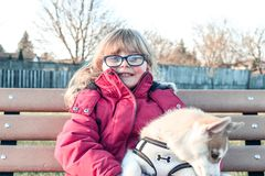 Little girl aged 3 to 5 holds a puppy on her arms, siberian husky stock images