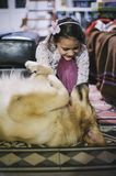 Little girl at home with her golden retriever dog Stock Image