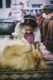 Little girl at home with her golden retriever dog Stock Photo