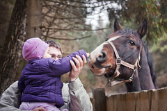 Little girl and horse Royalty Free Stock Photos