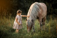 Little girl with horse Stock Photos
