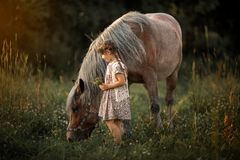 Little girl with horse Stock Photo