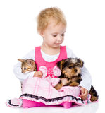 Little girl hugging a kitten and a puppy. isolated Royalty Free Stock Photos
