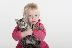 Little girl hugging pet kitten Royalty Free Stock Images
