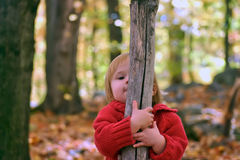 Hide and seek in the woods Royalty Free Stock Photo