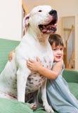 Little girl hugging white dog Stock Photos