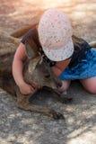 Little girl hugs a kangaroo in Israel zoo stock images