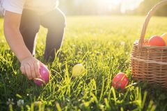 Free Little Girl Hunts Easter Egg. Child Putting Colorful Eggs In A Basket Royalty Free Stock Images - 135152489