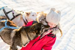 Little girl with husky dog. Adorable girl having a cuddle with husky sled dog in a farm in Northern Norway royalty free stock photos