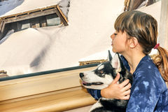 Little girl with the husky dog looking through the window Royalty Free Stock Image