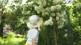 A little girl inhales the fragrance of flowers in the garden on a sunny day. stock video