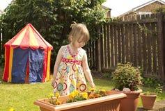 Little girl inspecting flowers Stock Images