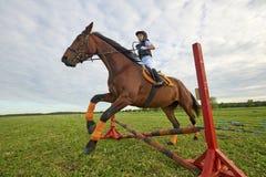 Little girl jockey and her chestnut horse jumper. Pretty little girl jockey and her chestnut horse jumper Royalty Free Stock Image