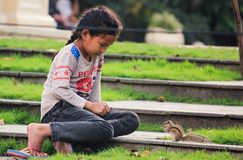 Little girl with squirrel. Little girl in Kathmandu playing with small squirel Stock Images
