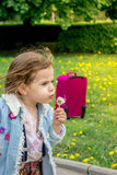Little girl kid blow dandelion. On park Royalty Free Stock Photos