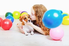 Little girl kissing with her jack russell terrier in birthday pa Stock Images