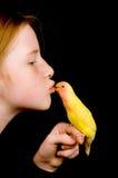 Little girl is kissing lovebird on black. Background stock image