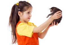 Little girl with kitty in hands Royalty Free Stock Photo