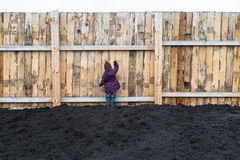 Little girl knocking at the fence Stock Photos