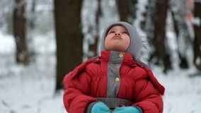 Little girl knocks nuts and calls squirrel stock video footage
