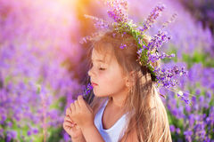 Little girl on lavender field Stock Photos