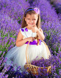 Little girl on lavender field Royalty Free Stock Images