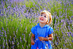 Little girl in a lavender field Royalty Free Stock Photography