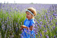 Little girl in a lavender field Royalty Free Stock Images