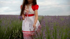 Little Girl In A Lavender stock footage