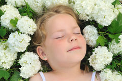 Little girl laying in flowers Stock Images