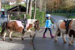 Little girl leading a pony. 4 years old girl leading a pony shetland in her first horse riding lesson. Some blur for the movement Stock Photo