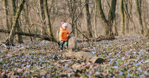 Little girl learns nature Stock Photo