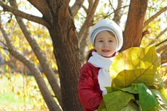 Little girl with leaves Stock Photography