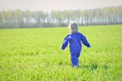 The little girl leaves deep into the field Royalty Free Stock Image