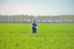 The little girl leaves deep into the field Royalty Free Stock Photos