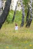 The little girl leaves deep into the woods. Stock Image