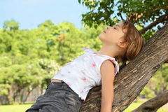 Little girl lies on caudex of tree Royalty Free Stock Image