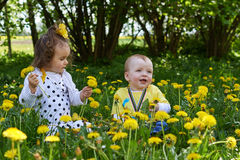 A little girl and a little boy reaps yellow flowers. A little girl and a little boy reaps yellow dandelion sunny spring day Royalty Free Stock Photos