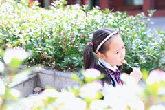 Little girl with lollipop. Sit on the steps in flower stock photography